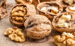 11 Surprising Facts About Walnuts