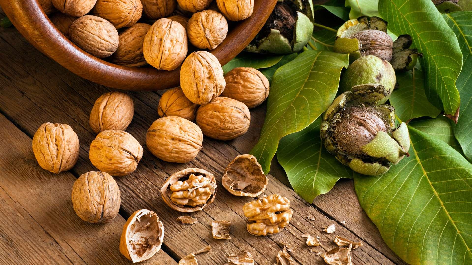 walnut-supplier-manufacturer-ukraine-export-importer-nuts-hazelnuts-11_compressed